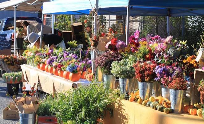 toronto-flower-market